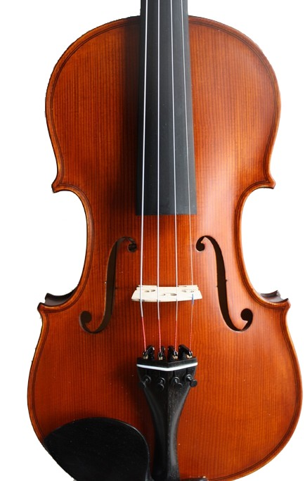 choisir son violon acoustique ou lectrique le blog. Black Bedroom Furniture Sets. Home Design Ideas