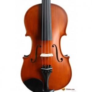 violon genial 1