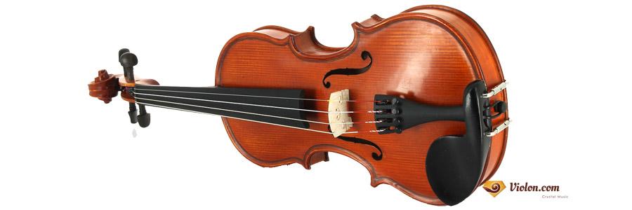Violon Gliga Genial 1